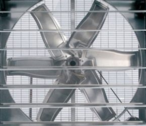 Quạt hút công nghiệp Vuông 1200×1200